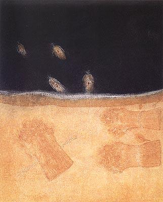 Fire-flies, by Hysni Krasniqi